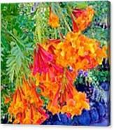 Sightful Canvas Print