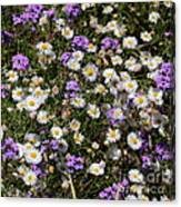 Flower Mix - Purple And White Canvas Print