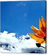 Flower N Hills Canvas Print