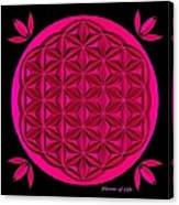 Flower Of Life - Pink Canvas Print