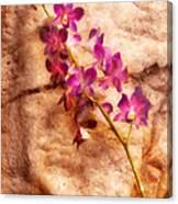 Flower - Orchid - Just Splendid Canvas Print