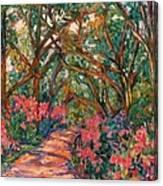 Flower Path Canvas Print