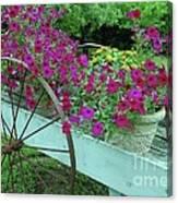 Flower Pot 2 Canvas Print