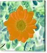 Flower Power 1433 Canvas Print