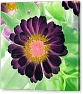 Flower Power 1435 Canvas Print