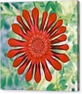 Flower Power 1438 Canvas Print