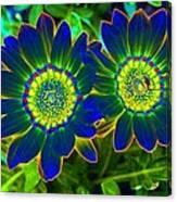 Flower Power 1446 Canvas Print