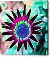 Flower Power 1448 Canvas Print