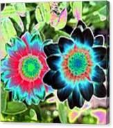 Flower Power 1449 Canvas Print