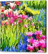 Flower Splash II Canvas Print