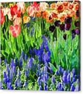 Flower Splash V Canvas Print
