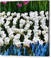 Flower Splash X Canvas Print
