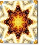 Flower Stars Canvas Print