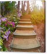 Flower Steps Canvas Print