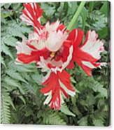 Flowerbird Zen Fancy  Canvas Print