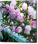 Flowering Almond Canvas Print