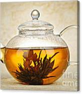 Flowering Blooming Tea Canvas Print