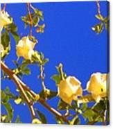 Flowering Tree 1 Canvas Print