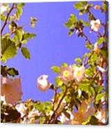 Flowering Tree 2 Canvas Print