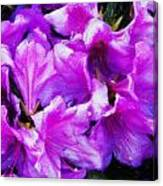 Flowers 2078 Acanthus Canvas Print