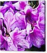Flowers 2078 Neo Canvas Print