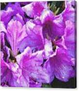 Flowers 2078 Pastel Chalk 2 Canvas Print