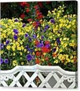 Flowers 53 Canvas Print