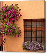 Flowers And A Window Canvas Print