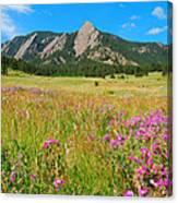 The Flatirons Colorado Canvas Print