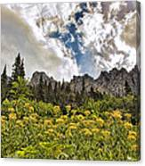 Flowers And Mountains And Sky...oh My Canvas Print