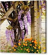 Flowers By The Gate Canvas Print