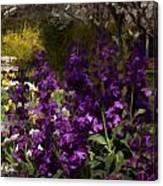 Flowers Dallas Arboretum V18 Canvas Print
