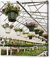 Flowers Growing In Foil Hothouse Of Garden Center Canvas Print