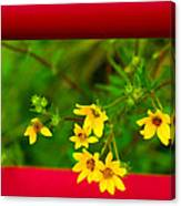 Flowers In Red Fence Canvas Print