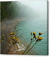 Flowers In The Fog Canvas Print