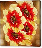 Flowers Of Flowers Canvas Print