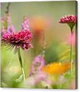 Flowers Of The Garden Canvas Print