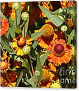 Flowers On The High Line Canvas Print