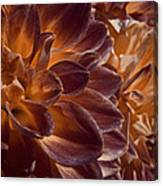 Flowers Should Also Turn Brown In Autumn Canvas Print