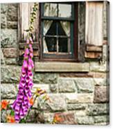 Flowers Stone And Old Country Window Canvas Print