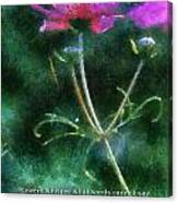 Flowers Whisper 02 Canvas Print