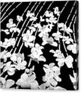 Flowery Flow Canvas Print