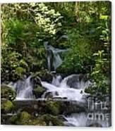 Flowing Creek In Spring  Canvas Print