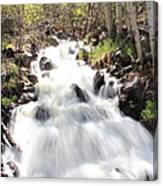 Flowing Fast Canvas Print