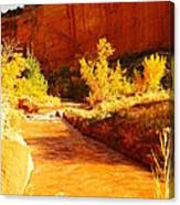 Flowing From Capital Reef Canvas Print