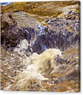 Flowing River Rapids Canvas Print