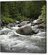 Flowing Stream In Vermont Canvas Print