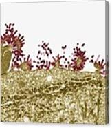 Flu Virus, Tem Canvas Print