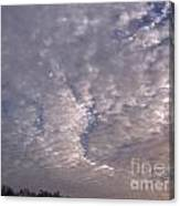 Fluff In The Sky Canvas Print