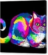 Fluffy Rainbow Cat 2 Canvas Print